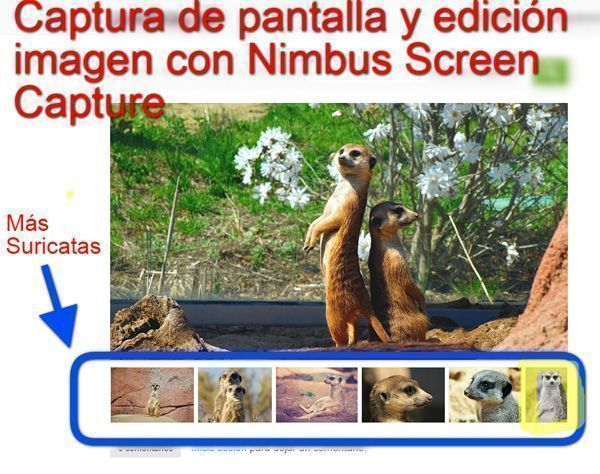 inicio nimbus screen capture- 600
