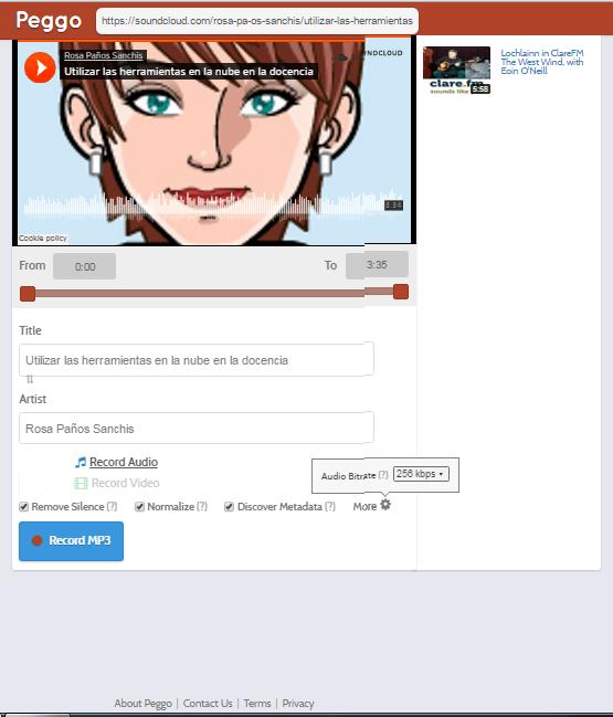 Interfaz audio-peggo (actualizado 2016) en rosapanos.com
