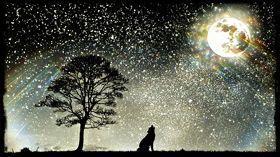 lobo con luna (Jean-Devine-Cornered) ejemplo pixlr-om-matic en rosapanos.com ( dim 280)