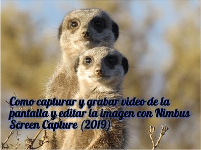 INICIO POST NIMBUS 2019 (400) by rosapanos.com -Pildoras de TIC